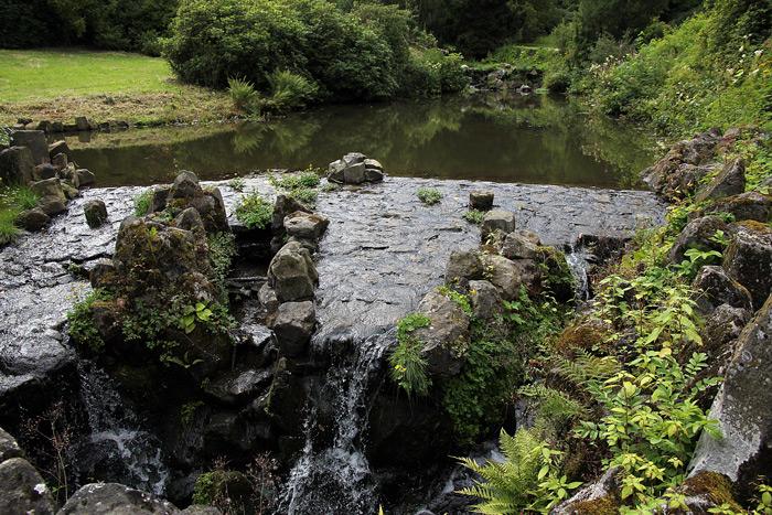 речка в парке