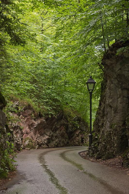 дорога от замка