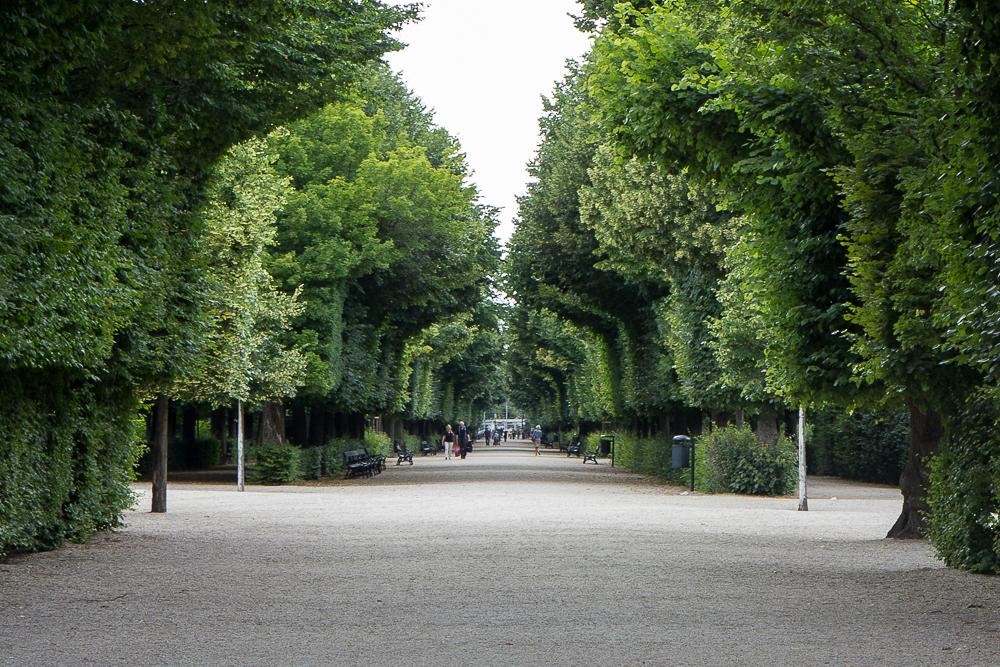 Дворец Шёнбрунн (Schloß Schönbrunn) - Парк ©Татьяна Гладченко, 2014