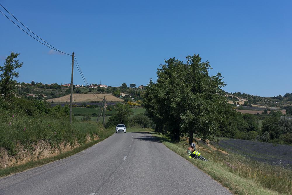 Дорога в Провансе, июнь 2014 года