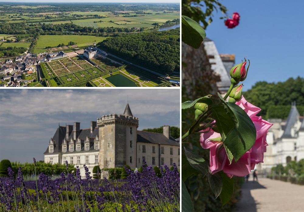Замок и сады Вилландри (Château de Villandry), Франция ©Татьяна Гладченко, 2014
