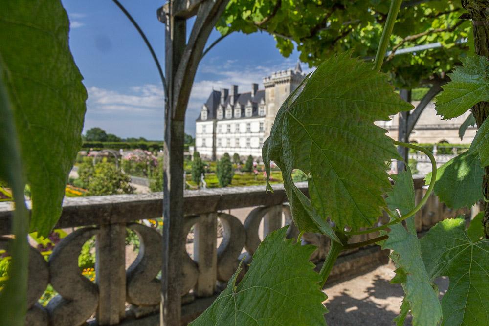 Сады и замок Вилландри (Château de Villandry), Франция ©Татьяна Гладченко, 2014