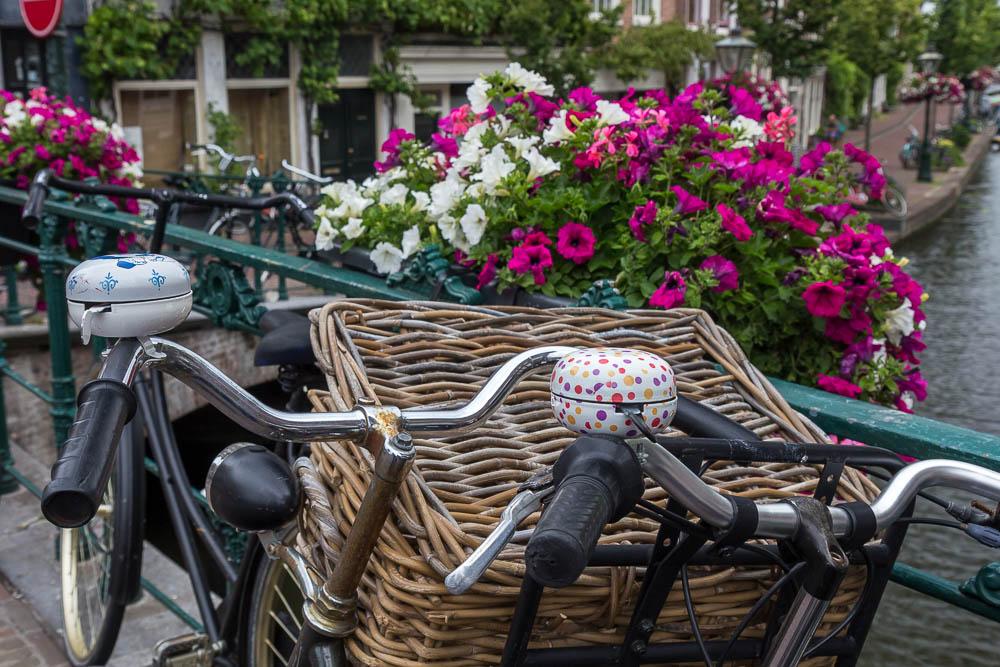 Лейден (Leiden) ©Татьяна Гладченко, 2015