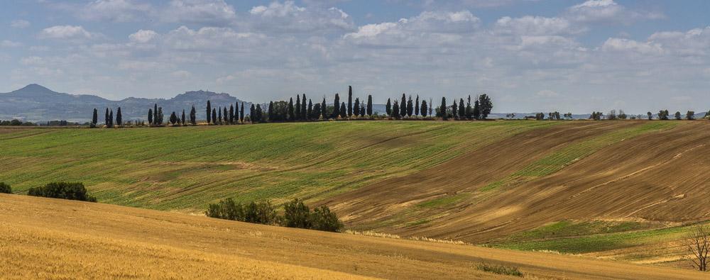 Тоскана ©Татьяна Гладченко, 2013