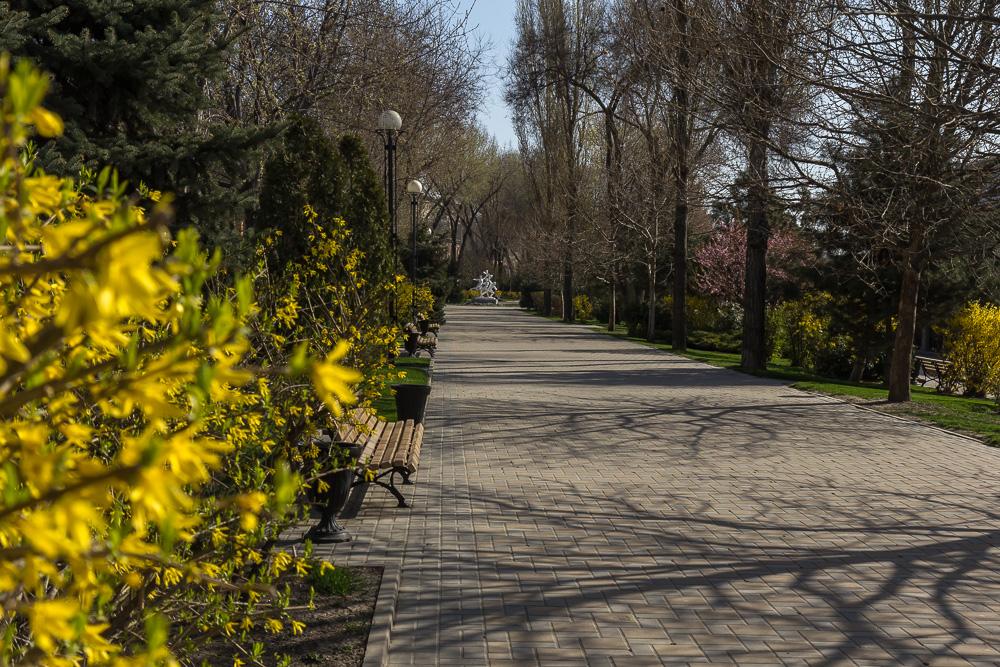 Весна в Ростове-на-Дону 2016 ©Татьяна Гладченко, 2016