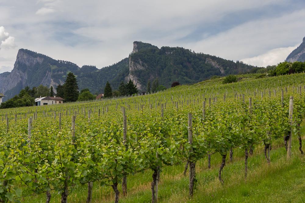 Майенфельд (Maienfeld), Швейцария