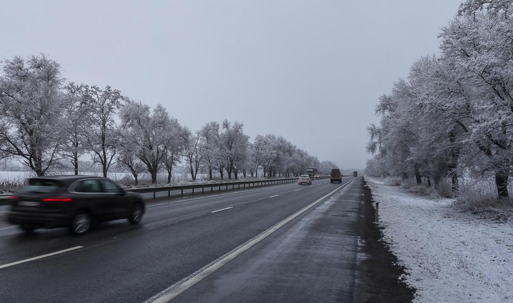 Будни ©Татьяна Гладченко, 2016